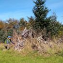 Heap up the habitat at NCLC's Circle Creek stewardship day Jan. 15